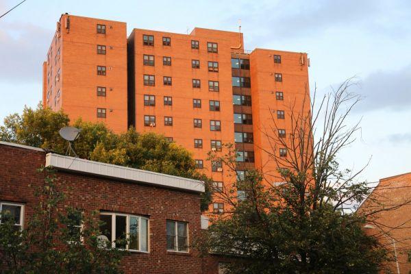 Public housing in Albany, NY