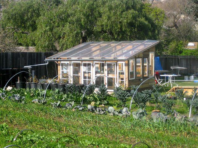 Urban Vegetable Garden Plan