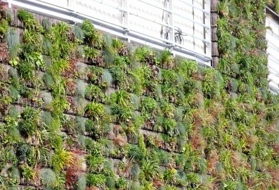 Could Green Walls Do The Job Of Cooling Towers