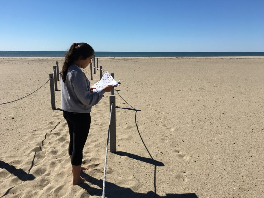 calif city tries shifting sands amid disappearing beaches next