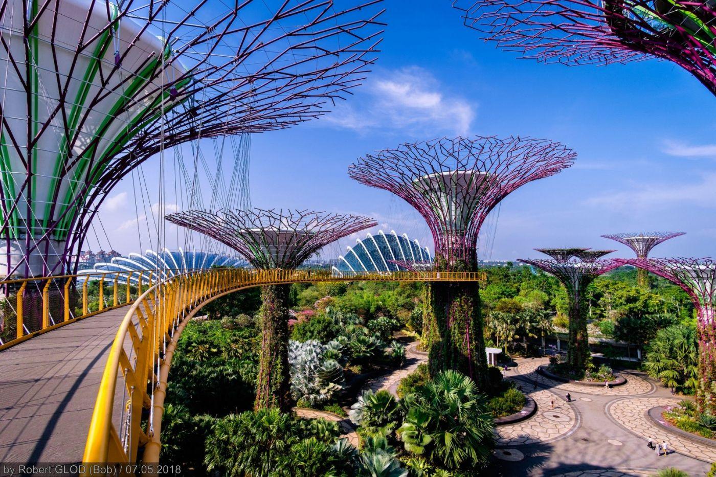 The City Within A Garden Next City