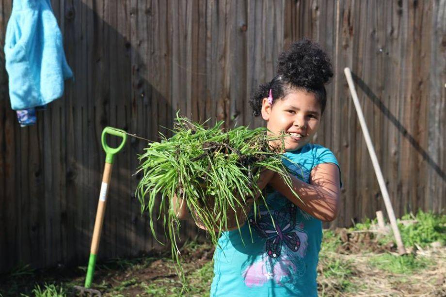 "Making Sacramento the ""Farm-to-Every-Fork"" Capital – Next City"